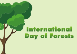 International Day of Forests - 2019